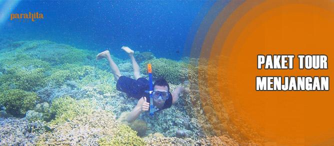 Pulau Menjangan Bali
