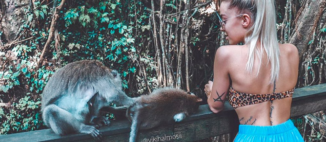 Monkey Forest Ubud Bali, tempat wisata menarik