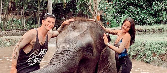 Daya Tarik Bali Zoo