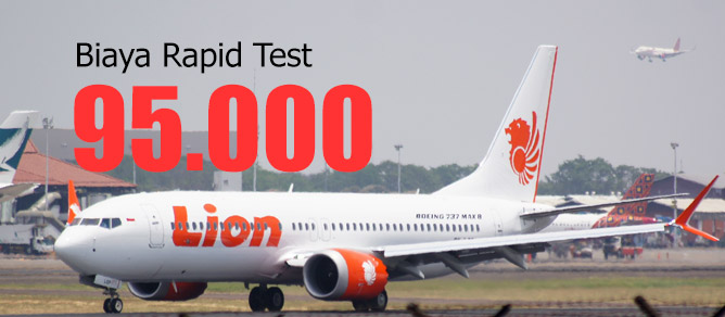 Rapid Test Lion Group